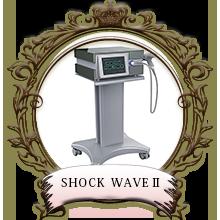 SHOCK WAVEⅡ
