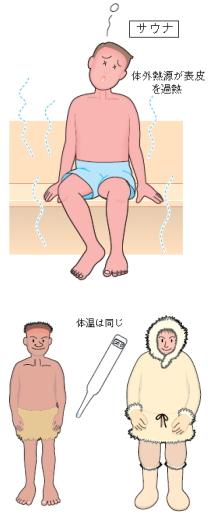 体外熱源と体内熱源の違い